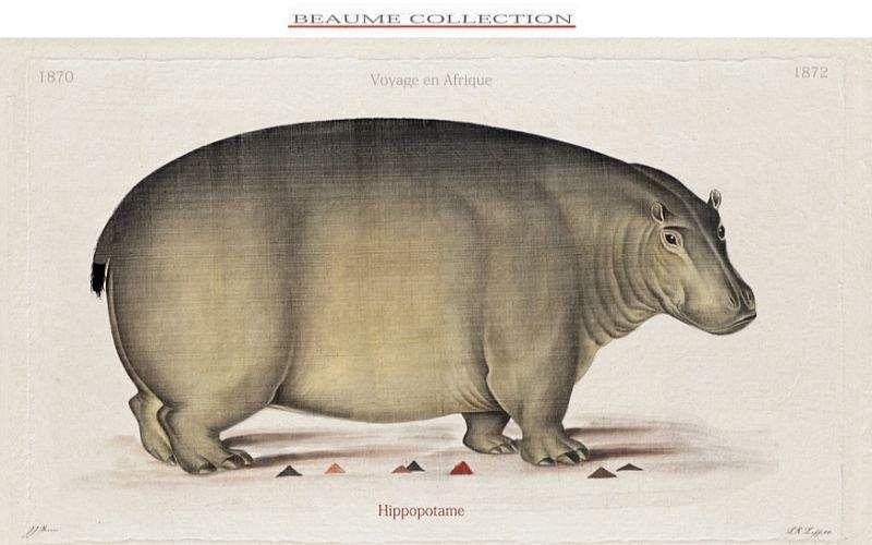 Beaume Collection Grabado Opere d'arte su carta Arte   |