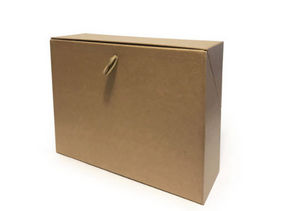 Papier Plus - craft - Caja Archivador