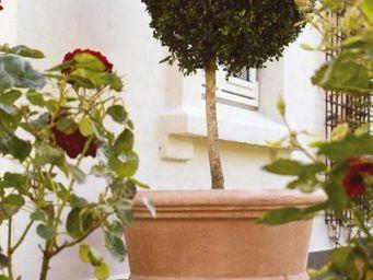 DEROMA France - florentina - Maceta Para Árbol