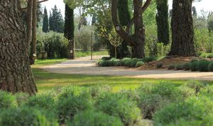 LES JARDINS DE GLANUM -  - Jardín Paisajístico