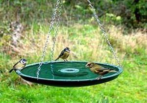 Meripac -  - Baño De Pájaros