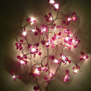atoutdeco.com - guirlande lumineuse fleurs de frangipanier - Ghirlanda Luminosa