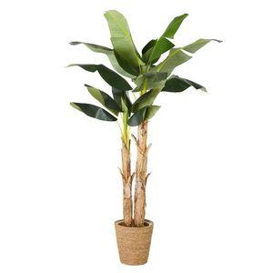 MAISONS DU MONDE - plante artificielle 1420099 - Pianta Artificiale